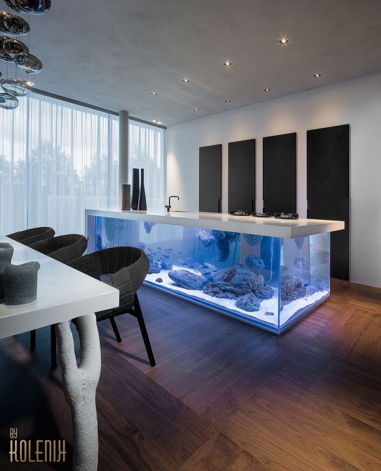 design kitchen aquarium