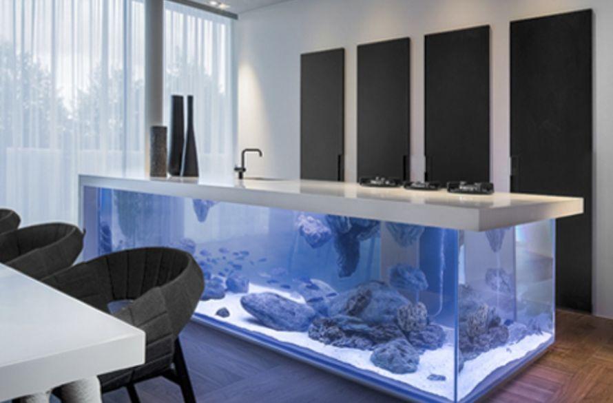 ocean kitchen aquarium kolenik
