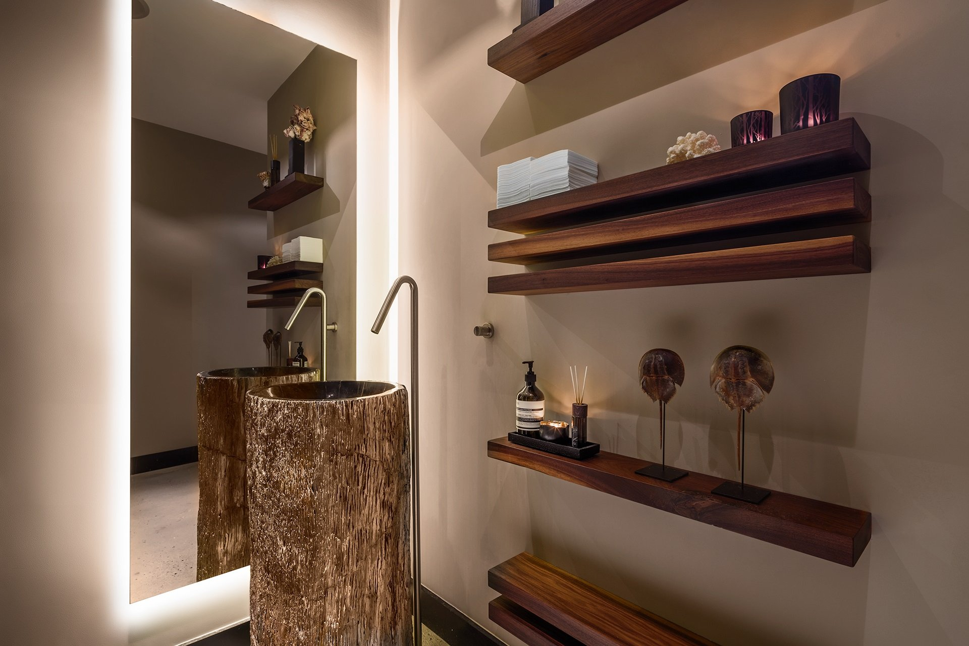 Luxury toilet design with walnut shelves and petrified wood washbasin with free-standing stainless steel tap.